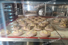 профессиональные-печи-Унокс